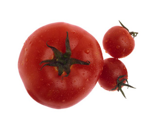 Seasonal Produce: Tomatoes