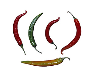 Seasonal Produce: Chile Peppers